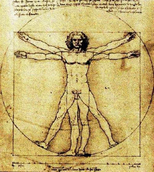 Leonardo da Vinci - El hombre de Vitrubio