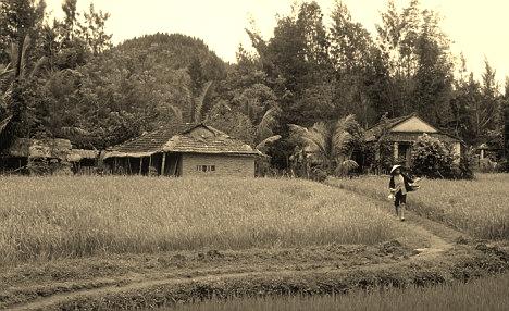 My Lai, Vietnam